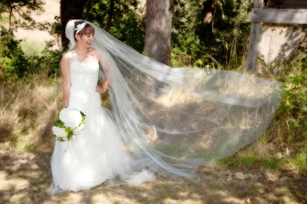 Seven Springs Wedding Photographer Matt Emrich