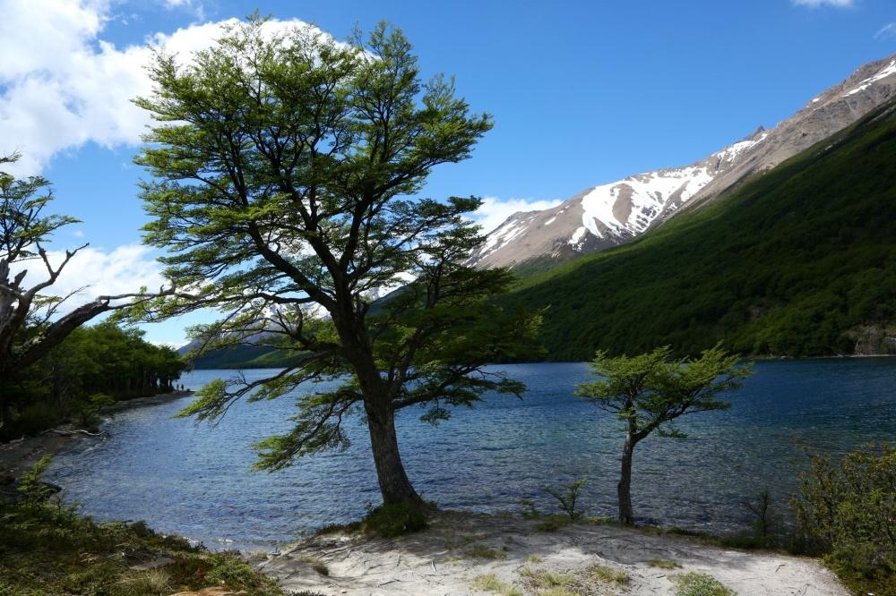 Lago Desierto 3