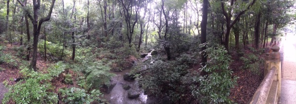 Meiji Jingu bridge